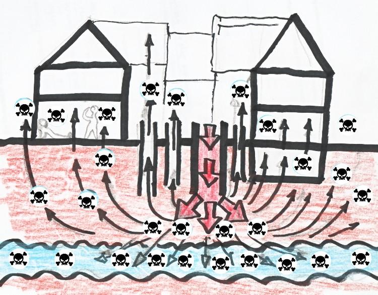 Bild-4.jpg