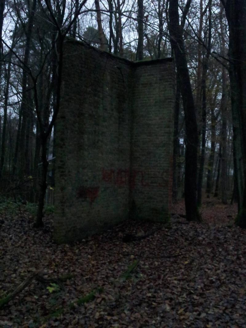 http://www.brunnentreff.de/wp-content/sp-resources/forum-image-uploads/fb2/2014/12/Bild-8.JPG
