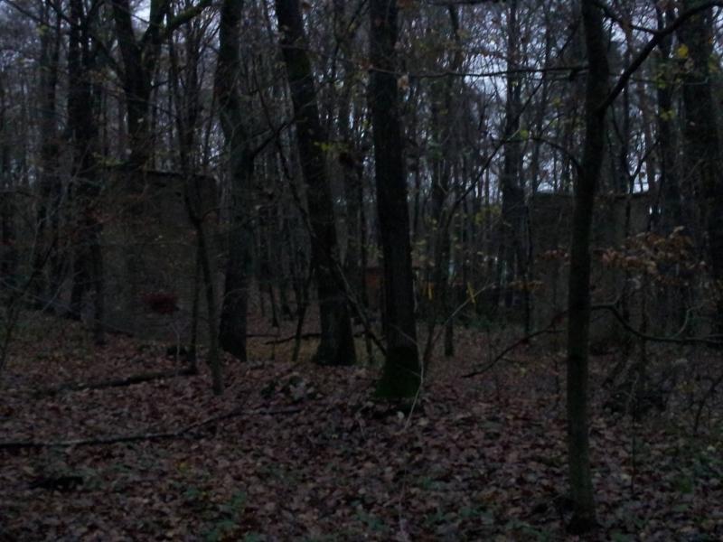 http://www.brunnentreff.de/wp-content/sp-resources/forum-image-uploads/fb2/2014/12/Bild-9.JPG