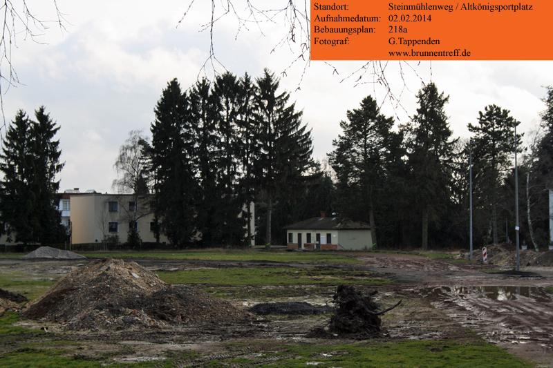 08-baeume-altkoenigsportplatz.jpg