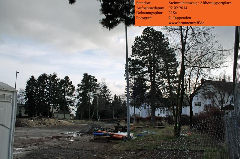 09-baeume-altkoenigsportplatz.jpg